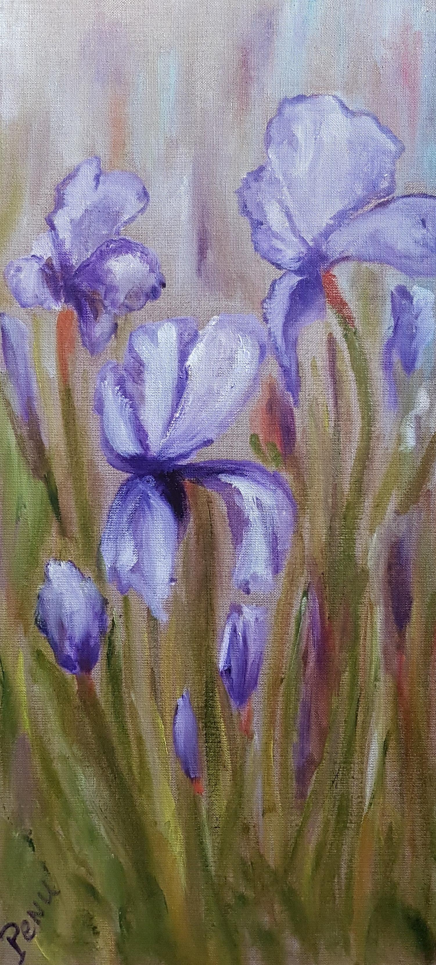 Iris au jardin