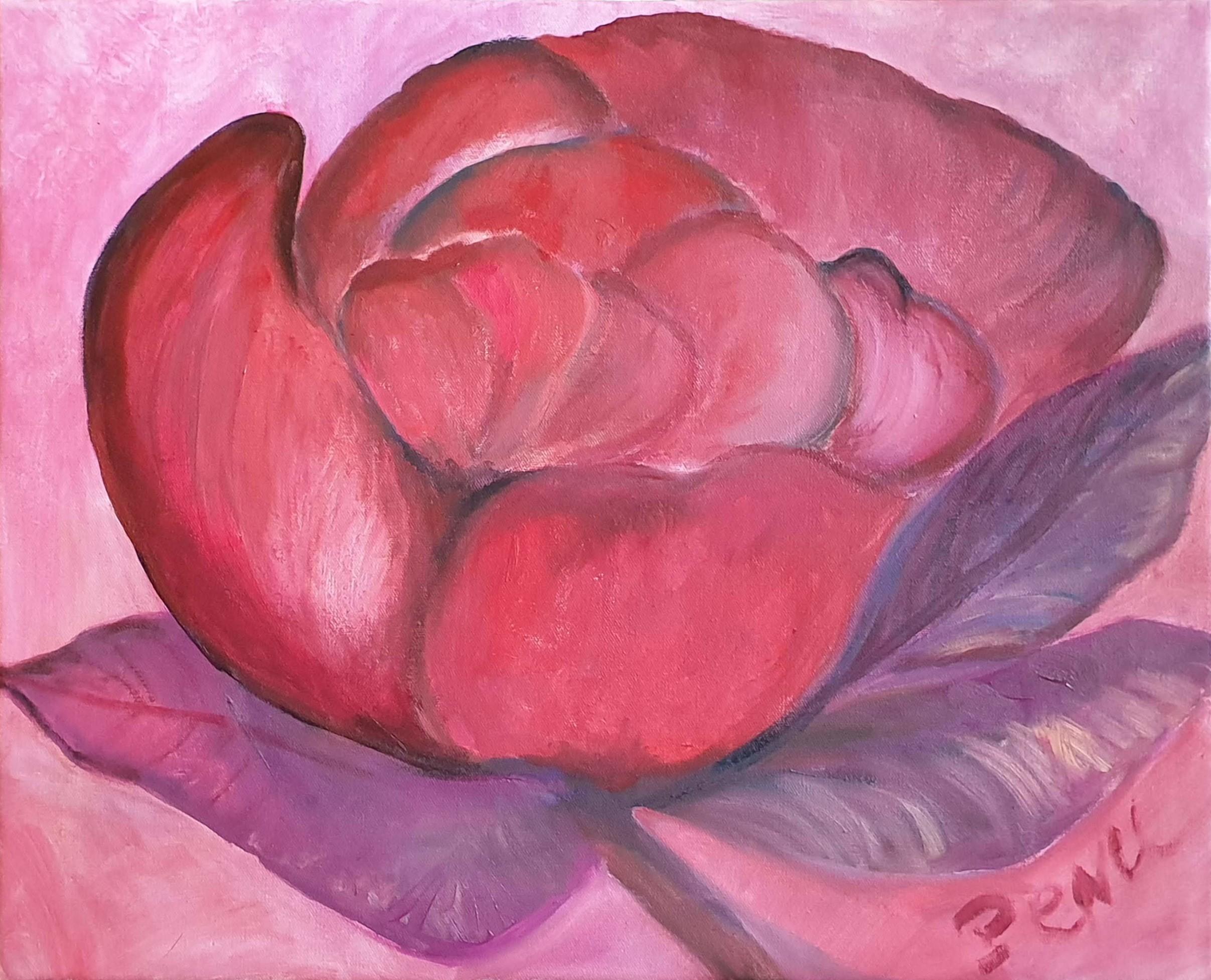 Rose Quinacridone
